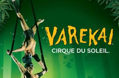 laissezvous-envouter-par-le-spectacle-varekai-du-cirque-du-1500481-regular